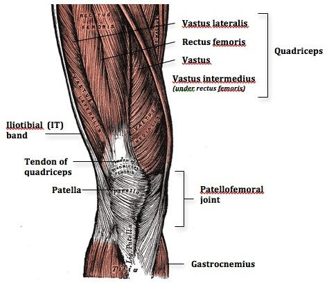 Combatting Knee Pain - ACE Physical Therapy and Sports Medicine ...