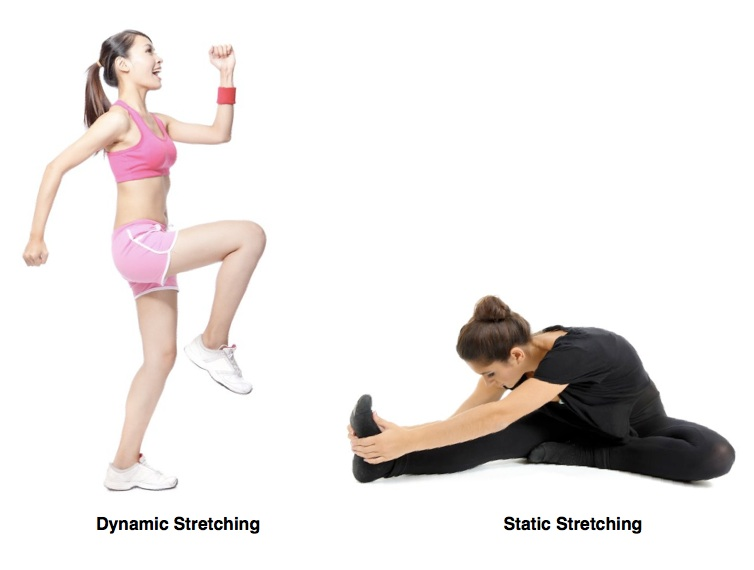dynamic stretching and static stretching