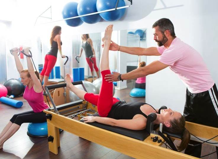 physical therapy course james d robinson