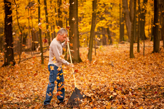 Prevent Leaf Raking Injuries